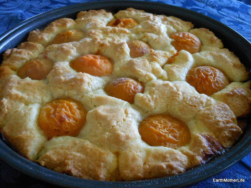 Old Fashioned Apricots