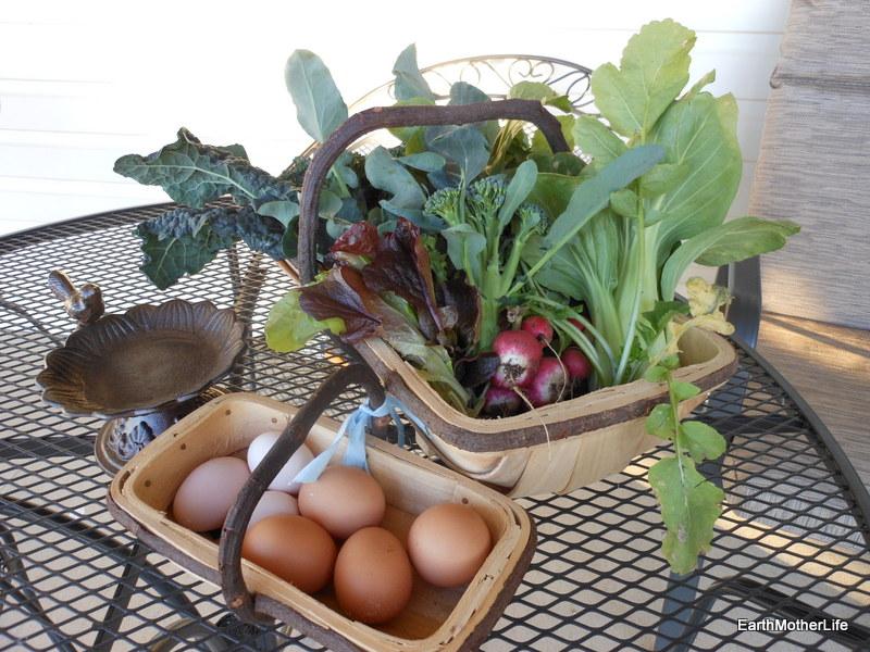 Mid Winter Vegetable Haul!