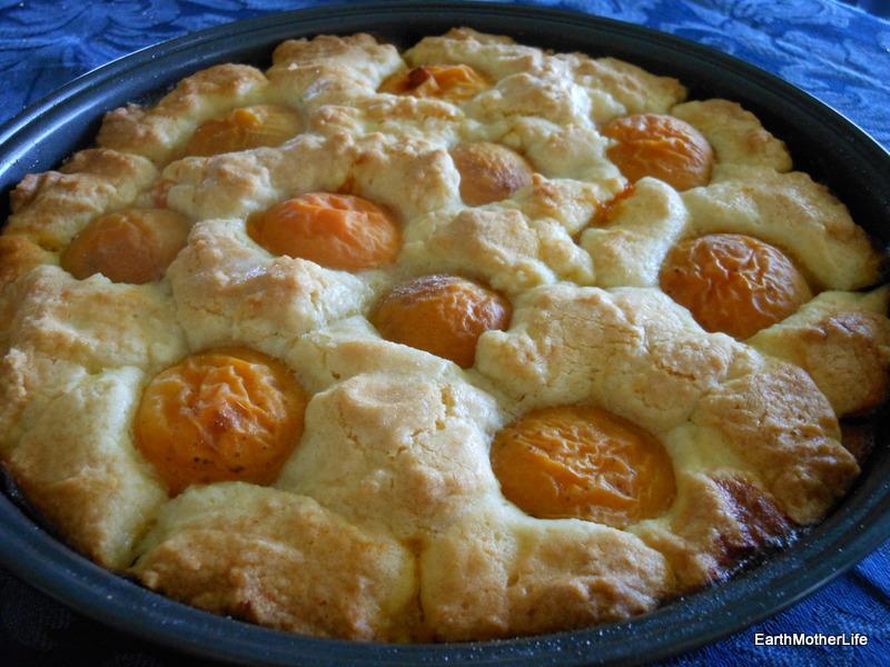 Apricot Shortcake
