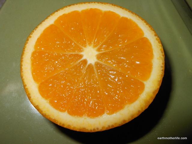 Seedless Valencia Orange